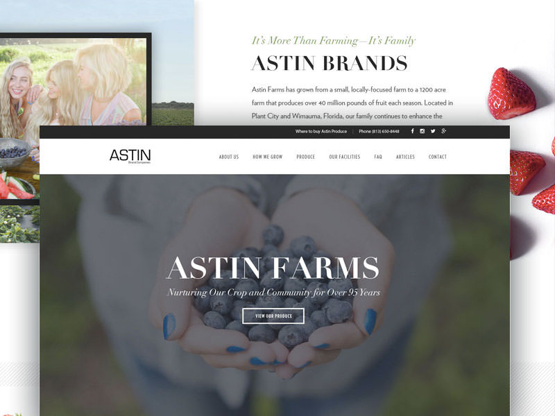 Astin farms website redesign