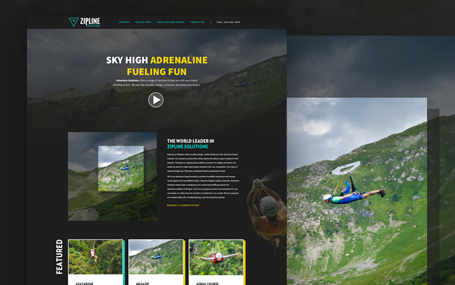 Custom website for Zipline solutions