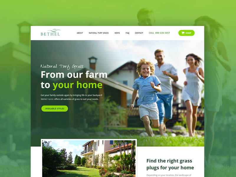 Homepage website redesign for Bethel Farms