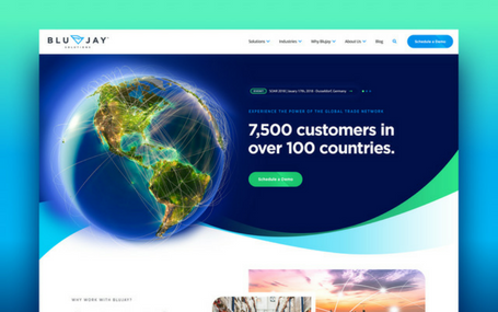 BluJay Solutions Website Design