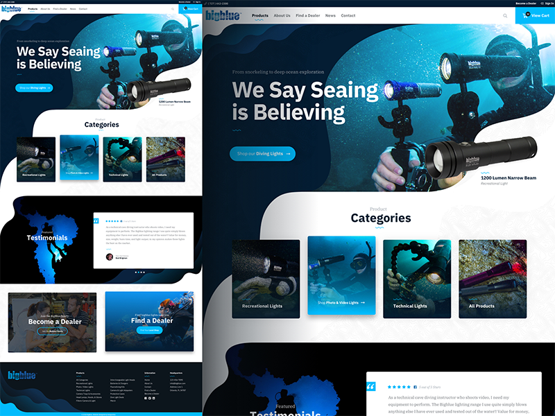 Bigblue Dive Lights Website Design
