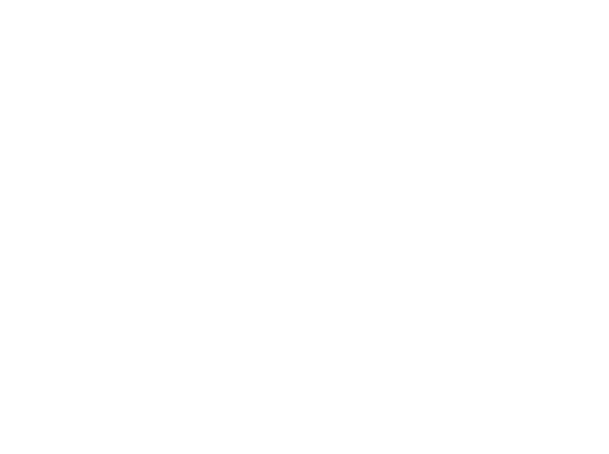 Florida capital bank logo white