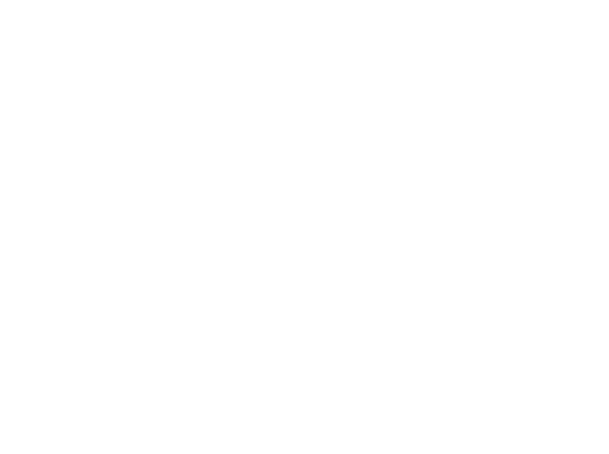 Foundation Academy logo white